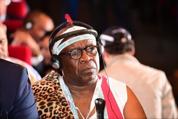 « L'Afrique peut être grande sans aide extérieure » : dixit un roi sud-africain
