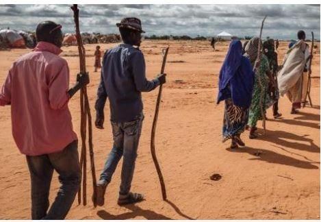 ONU : La COVID-19 pourrait causer plus de déplacements et 33 millions de personnes pourraient basculer dans la famine