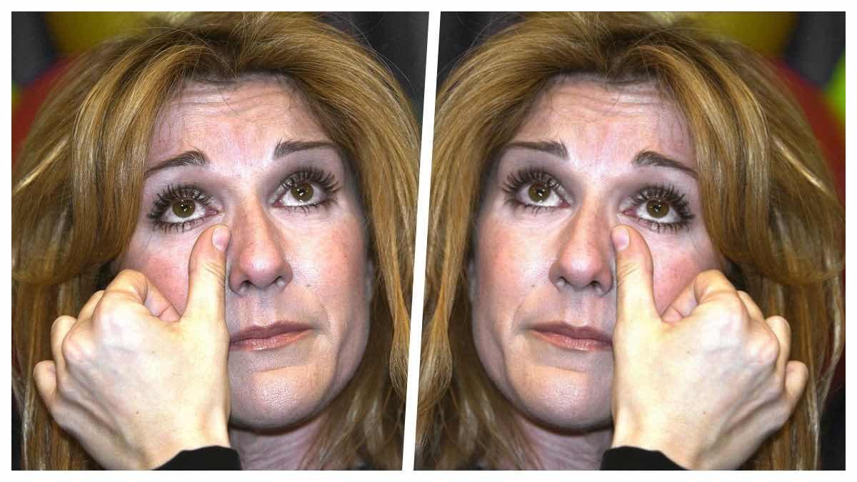 Confidences émouvantes de Céline Dion qui lance un appel aux dons