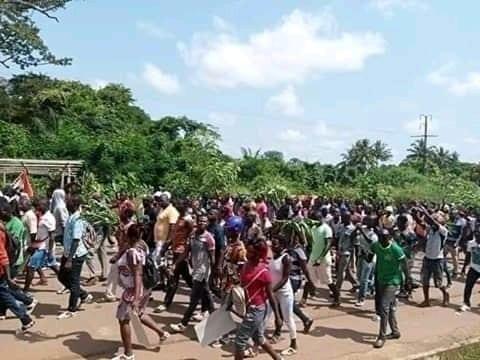 Côte d'ivoire: géante manifestation du CNT en cours ce lundi