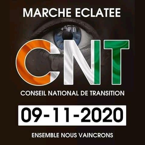 Côte d'Ivoire : le conseil national de transition organise une géante marche