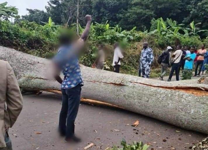 Ville morte annoncée le 9 novembre 2020 en Côte d'Ivoire : le bras de fer se durcit entre Pouvoir et Opposition