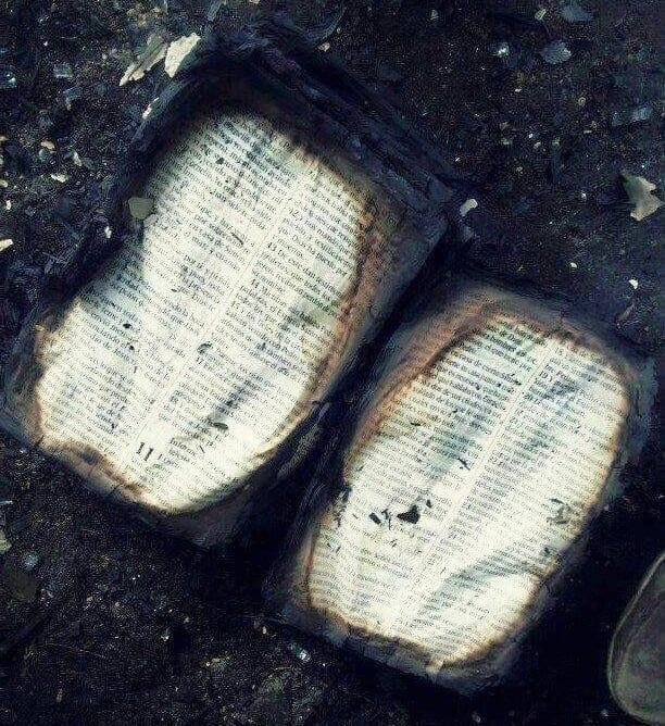 Un fou brûle une bible, la suite va vous étonner