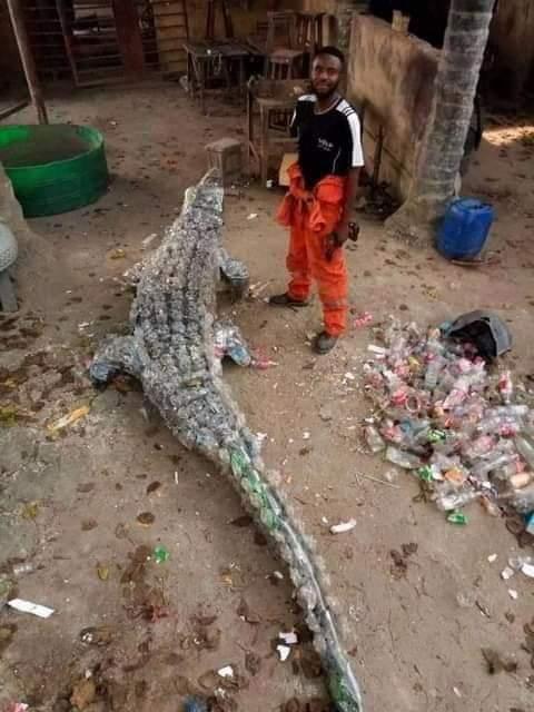 Ce jeune artiste fabrique des crocodiles avec des bouteilles plastiques (photos)